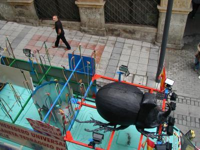 20080704105853-virrey-de-sicilia.jpg