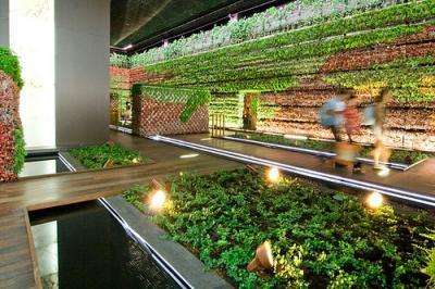 20081029114335-jardines.jpg