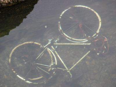 20100826174626-bici.-ceruelo.jpg