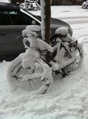 20101223131013-bicicleta-nevada.jpg