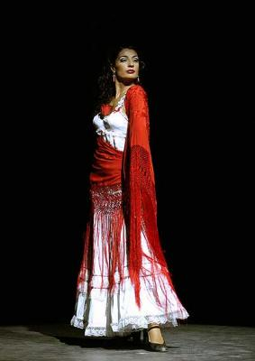 20081023142159-ballet-flamenco-madrid.jpg