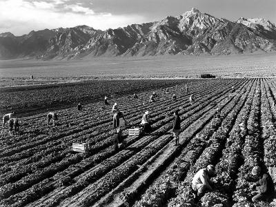 20091122111614-ansel-adams-farm-workers-and-mt-williamson.jpg