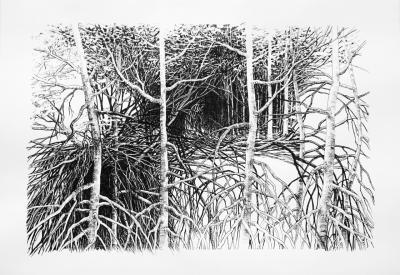 20200712161226-ramas-y-raices-2020.-tinta-china-sobre-papel-70-x-100-cm.-sylvia-pennings.jpg